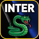 Inter Milan 2010/2011 logo