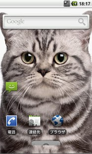 玩個人化App|Neko(貓)免費|APP試玩