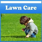 Lawn Care Tips !