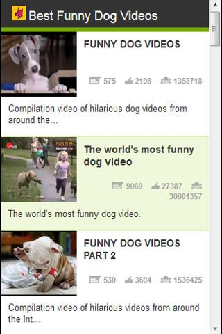 Best funny dog videos