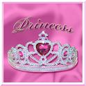 Princess Crown Theme logo