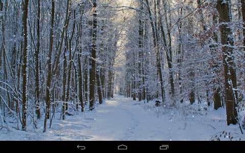 Winter Wallpaper screenshot 9