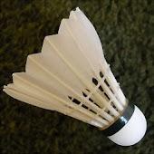 Badminton Counter