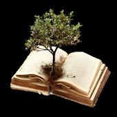 Scripture Mastery App (Deu)