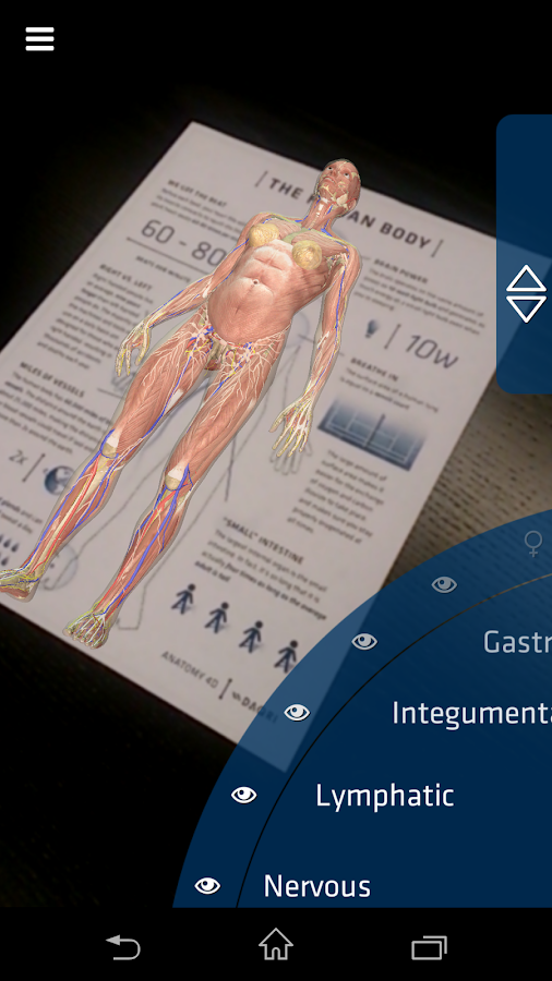 Anatomy 4D- screenshot