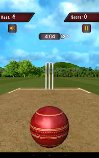 Flick Cricket 3D
