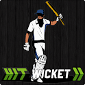 Hit Wicket Cricket - County icon