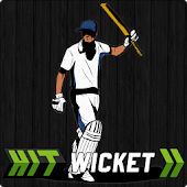 Hit Wicket Cricket English Cup