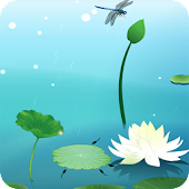 Lotus Pool Live Wallpaper
