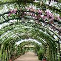 Japan:Yokohama English Garden icon
