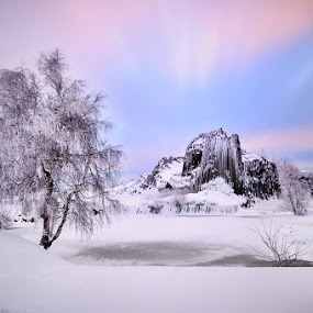 Volcanic winter by Pavel Klásek - Landscapes Sunsets & Sunrises ( water, hill, peak, frost, rock, volcanic, boulder, morning, sky, winter, tree, cold, nd, ice, snow, cloud )