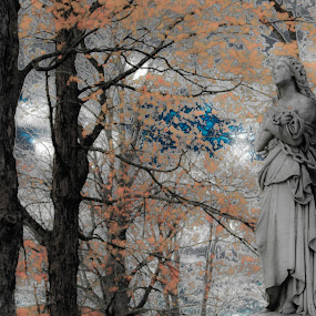 by Richard Petersen - Artistic Objects Other Objects ( statue, pwc, selective color, trees )