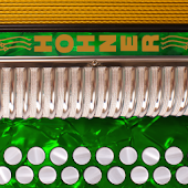 Hohner C#/D Button Accordion