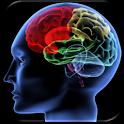 Shuffle 'n Slide Brain Game