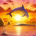 Dolphins Jigsaw Puzzles icon