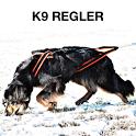K9 Regler icon