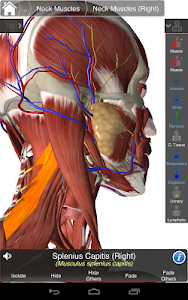 Essential Anatomy 3 v1.1.2