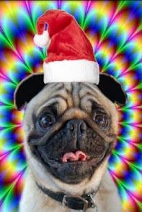 Christmas talking dog - screenshot thumbnail