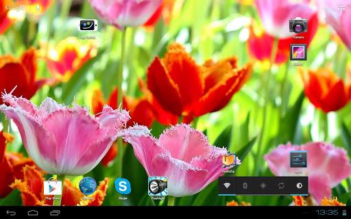 無料个人化Appの3D Fascinating Tulips Free|記事Game