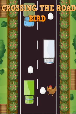 Crossing the road : Bird