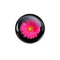 Crystal Flower Wallpapers icon