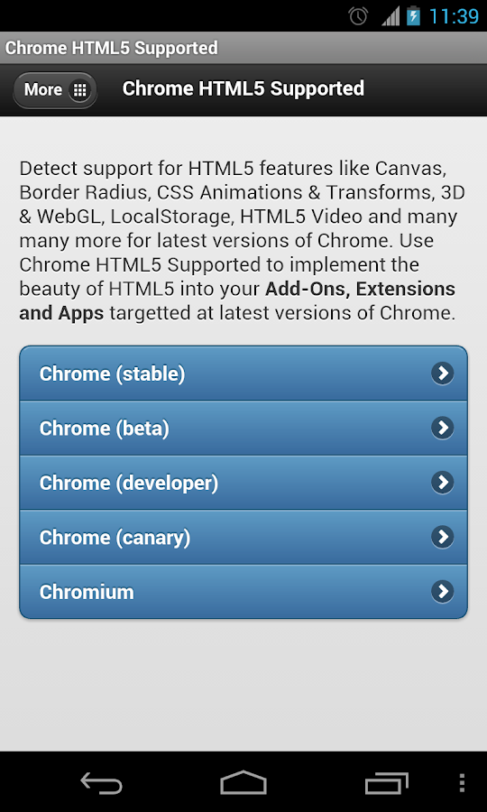 Chrome HTML5 Supported? - screenshot