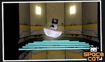 Screenshot of SpaceCat (3D)
