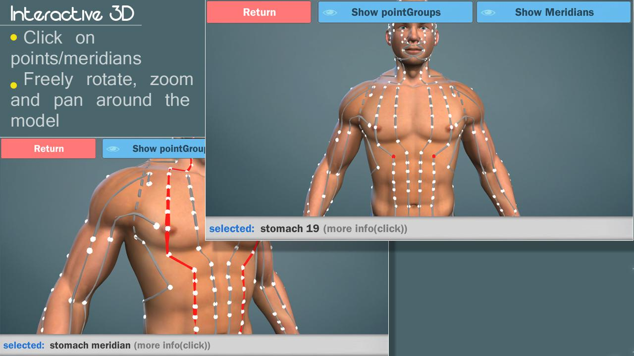 Easy Acupuncture 3D -FULL- screenshot