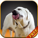 Labrador Licks Screen LWP icon