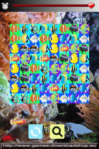Fisch Rennen