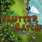 Flutter Catch