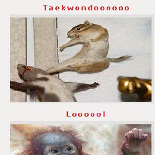funny jokes pics