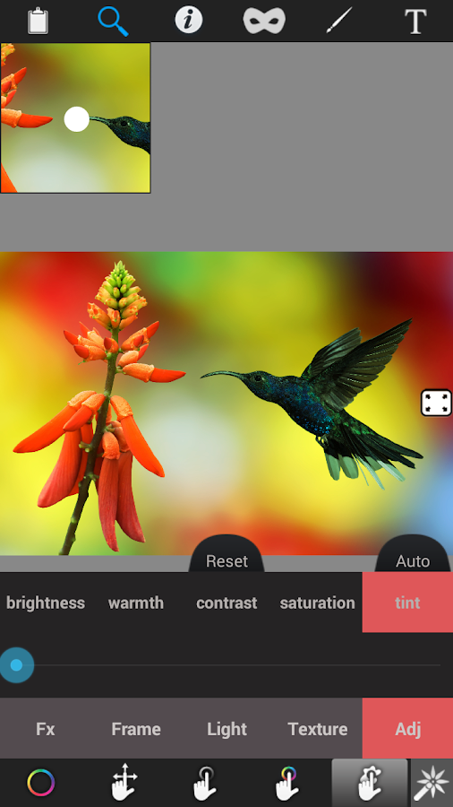 Photo Editor Color Effect - screenshot