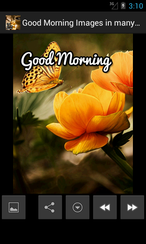 Good Morning In Many Languages : Good morning images multilang android apps on google play