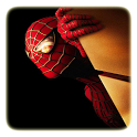 Amazing Spiderman Puzzle icon