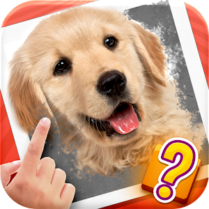 Scratch Quiz 1 0 1 Apk, Free Puzzle Game - APK4Now