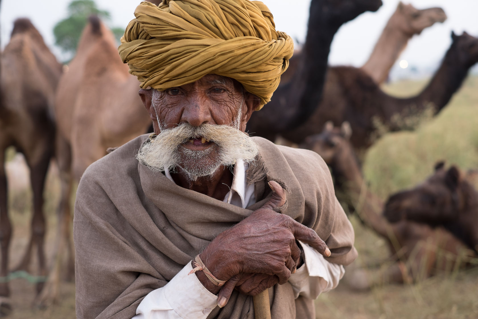 Camel Trader, Pushkar India
