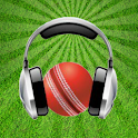 The Cricket Analyst logo