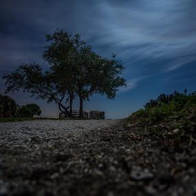 Picnic Island by Joe Giannotti - Landscapes Prairies, Meadows & Fields