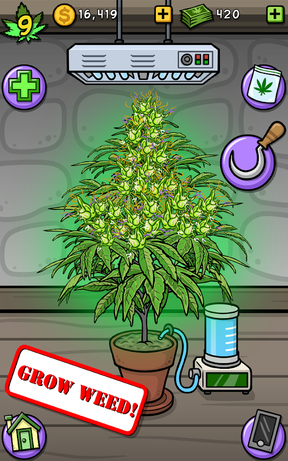 Pot Farm Grass Roots Android Apps On Google Play