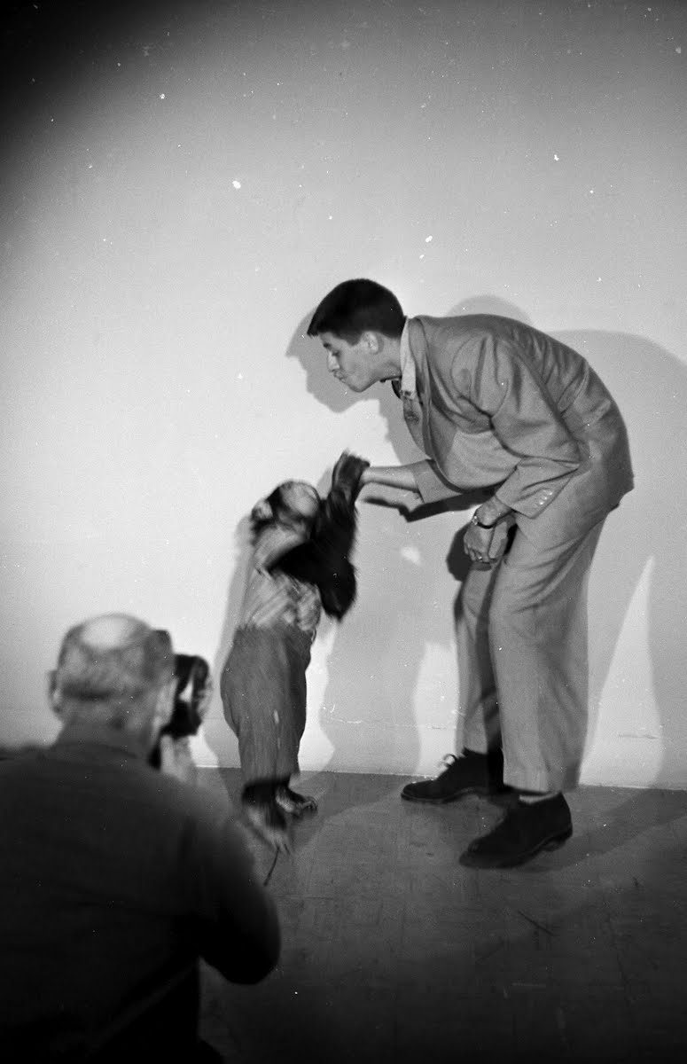 Jerry Lewis And Chimpanzee