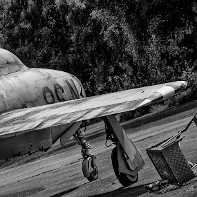 License to fly revoked! by Gerd Moors - Transportation Airplanes ( decorative, black and white, airplane, plain, grounded, jet,  )