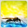 Ant,蟻