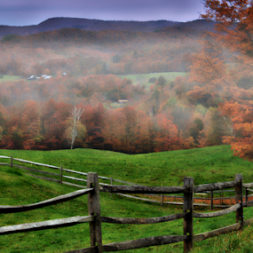 Foggy Morning by Janet Lyle - Landscapes Mountains & Hills ( autumn, fall )