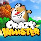 Crazy Hamster icon