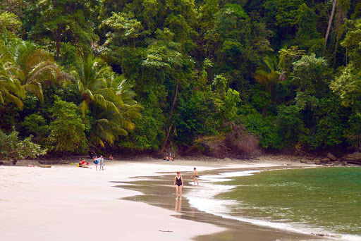 Costa-Rica-tropical-rainforest - Star Clippers guests spend a day on the beach, which runs right up to the tropical rainforest in Costa Rica.