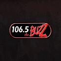 106.5 The Buzz - WHBZ icon