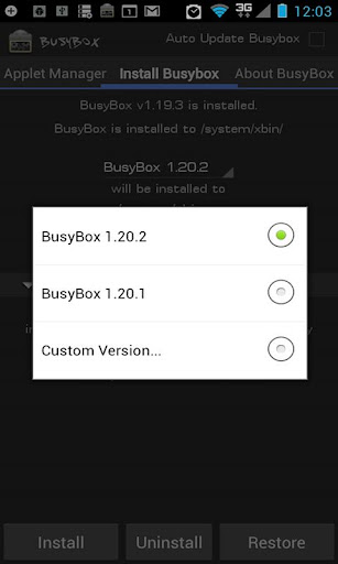BusyBox Pro 06