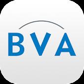 BVA Auctions Online veilingen