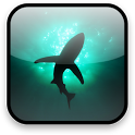 Shark Video Wallpaper Free icon